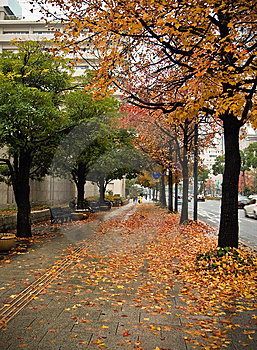 Hiroshima Streets Royalty Free Stock Images - Image: 8560779
