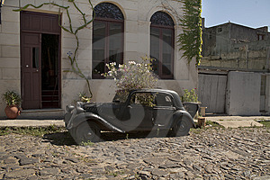 Old Wrecked Car With Plants Stock Photos - Image: 8562153