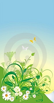 Spring Composition For Card Stock Photos - Image: 8564453