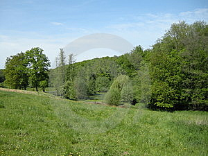 Trees And Meadows Royalty Free Stock Images - Image: 8565099