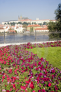 Cathedral With Foreground Flowers And River Stock Photography - Image: 8569402