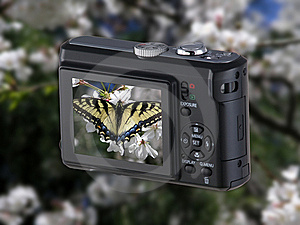 Point & Shoot Camera With Butterfly Royalty Free Stock Photography - Image: 8569867