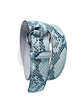 Woman Leather Belt Stock Photo - Image: 8572220