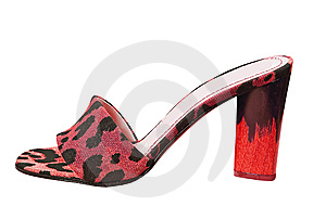 Leopard Shoe Royalty Free Stock Photography - Image: 8572227