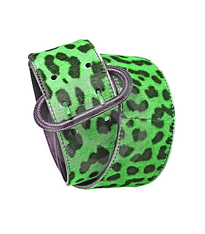 Green Leopard Leather Belt Royalty Free Stock Photo - Image: 8572235