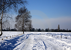 Snow Field Royalty Free Stock Photos - Image: 8573948