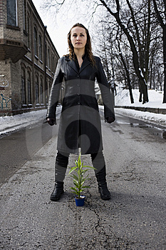 Warrior About Greenness Stock Photos - Image: 8577463
