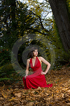 Red Dress In The Forest Stock Photos - Image: 8578563