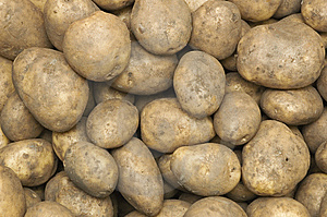 Lots Of Potatos Royalty Free Stock Images - Image: 8579889