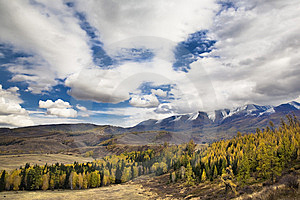 Clouds Mountains With Forest Stock Images - Image: 8583324