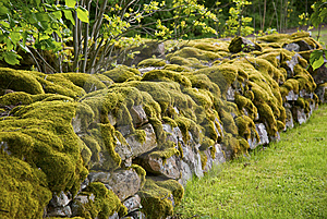 Mossy Stone Wall Stock Photography - Image: 8584832