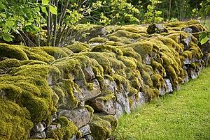 Mossy Stone Wall Stock Photography - Image: 8584832
