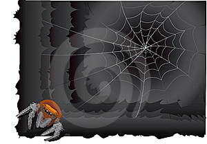 Spider  In Web Royalty Free Stock Image - Image: 8585486