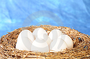 White Eggs In Golden Nest Stock Photos - Image: 8586543