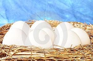 White Eggs In Golden Nest Royalty Free Stock Photos - Image: 8586628