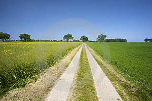 Empty Road In The Countryside Stock Photos - Image: 8588473