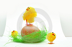 Easter Chickens Royalty Free Stock Photos - Image: 8589878