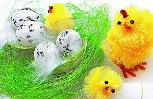 Easter Chickens Royalty Free Stock Photography - Image: 8589957