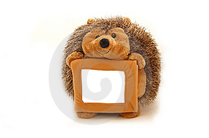 The Hedgehog Congratulates Royalty Free Stock Photography - Image: 8594207