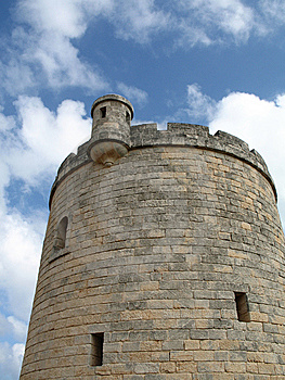 Castle Royalty Free Stock Photography - Image: 8594827