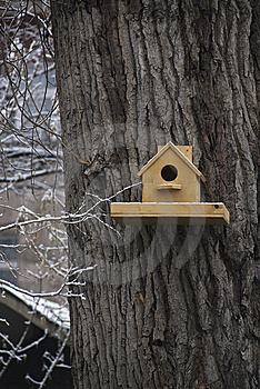 Nestling Box On The Tree Royalty Free Stock Images - Image: 8598139