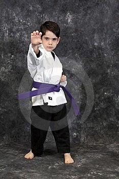 Karate Palm Heel Strike Royalty Free Stock Photography - Image: 8599167