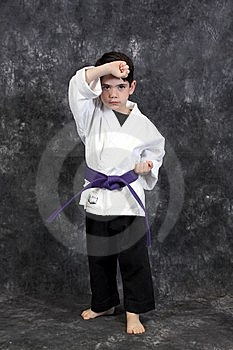 Martial Arts Puch Boy Royalty Free Stock Photo - Image: 8599175