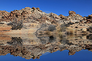 Desert Reflections Stock Photo - Image: 8600280