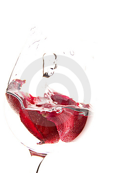Rose Petals Stock Photography - Image: 8600412