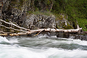 Wood In River Stock Images - Image: 8600904