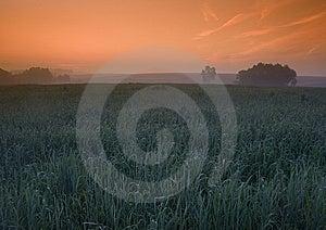 Foggy Sunrise Stock Image - Image: 8601641