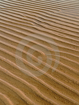 Littoral Zone Royalty Free Stock Photo - Image: 8602005