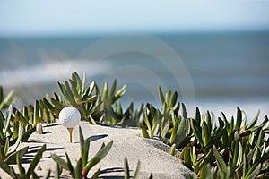 Golf Ball Stock Photography - Image: 8602372