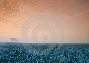 Foggy Sunrise Royalty Free Stock Photo - Image: 8602735