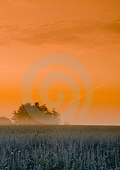 Foggy Sunrise Royalty Free Stock Image - Image: 8602766