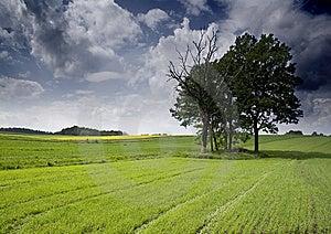 Non-urban Scene Stock Image - Image: 8603541