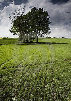 Non-urban Scene Stock Image - Image: 8603571