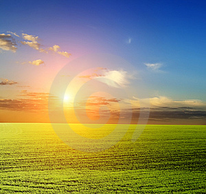 Green Field And Beautiful Sunset Stock Image - Image: 8603681
