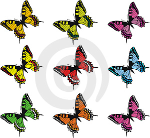 Collection Of Colorful  Butterflies Stock Photos - Image: 8604263