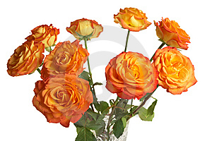 A Bouquet Of Yellow Roses Royalty Free Stock Image - Image: 8604336