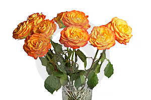 A Bouquet Of Yellow Roses Stock Image - Image: 8604381