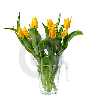 Yellow Spring Tulips Stock Images - Image: 8604684
