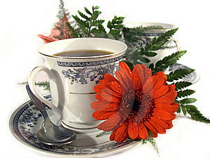 Black-coffee Royalty Free Stock Image - Image: 8604746