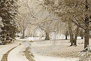 First Snow Stock Images - Image: 8605554