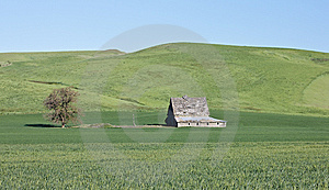 Palouse Barn Stock Photos - Image: 8606853