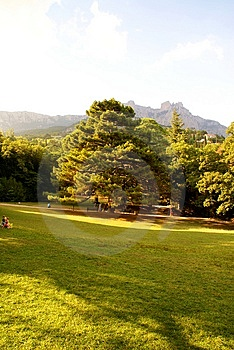 Park Of Crimea Royalty Free Stock Image - Image: 8608076