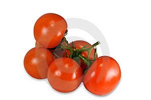 Tomatoes Isolated On White  Stock Image - Image: 8609081