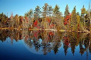 Fall Scene At Flack Lake Stock Images - Image: 8609294