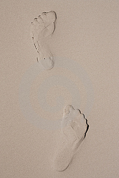 Foot Prints On Sand Beach. Stock Photography - Image: 8609702