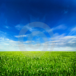 Idyllic Landscape Royalty Free Stock Photography - Image: 8610767